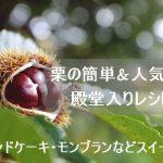 栗レシピ!簡単&人気1位&殿堂入りを紹介!パウンドケーキ・モンブランなどスイーツ編!