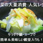 白菜の大量消費の人気レシピ!サラダや鍋・スープで簡単&美味しい殿堂入りも!