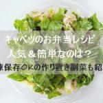 キャベツのお弁当レシピ人気&簡単なのは?冷凍保存OKの作り置き副菜も紹介!